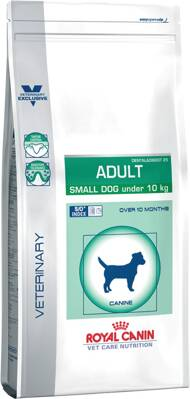 Veterinary Care Dog Adult Small Dog