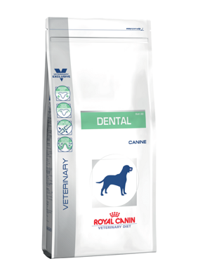 Veterinary Diet Dog Dental