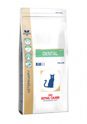 Veterinary Diet Cat Dental